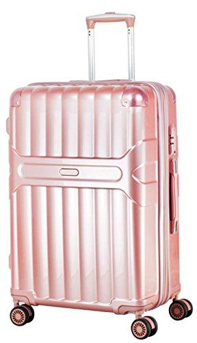 Ambassador Metal (Ambassador Luggage Zip-Tech 20