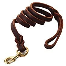 """Fairwin Braided Leather Dog Leash 6 Foot - Best Dog Training Leash for Large Medium Small K9 Dogs ( 1/2"""" Width, Brown)"""