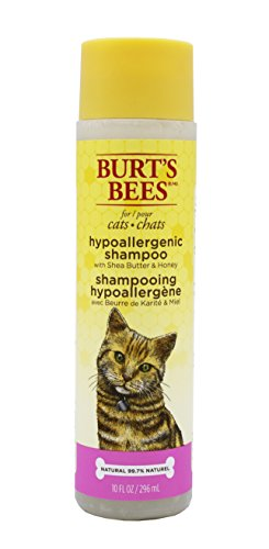 Burt's Bees for Cats All-Natural Hypoallergenic Shampoo with Shea Butter and Honey | Best Anti-Itch Hypoallergenic Shampoo for All Cats and Kittens With Dry Skin, 16 ounces