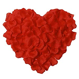 CATTREE Rose Petals, 3000 PCS Silk Artificial Petals Vase Home Decor Wedding Bridal Decoration Wholesale Party Ceremony (Red) 77