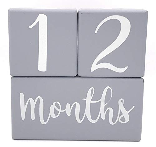 Months in Motion Baby Milestone Age Blocks - Infant Photo Prop Pictures for Weeks Months Years Grade - Pregnancy Countdown Sharing - Rustic Gray Grey