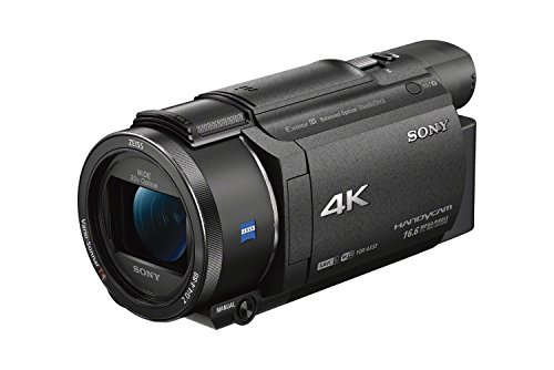 Sony FDRAX53/B 4K HD Video Recording Camcorder (Best Professional Camcorders)