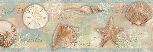 Chesapeake BBC46051B Quinten Seashells Toss Wallpaper Border, -