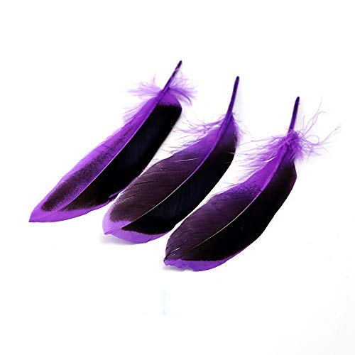 MIPPER 100 pcs 4~6 Inch Dyed Duck Feather DIY Handwork Jewelry Costume Accessories Crafts Art Decoration Plumes (Purple) ()