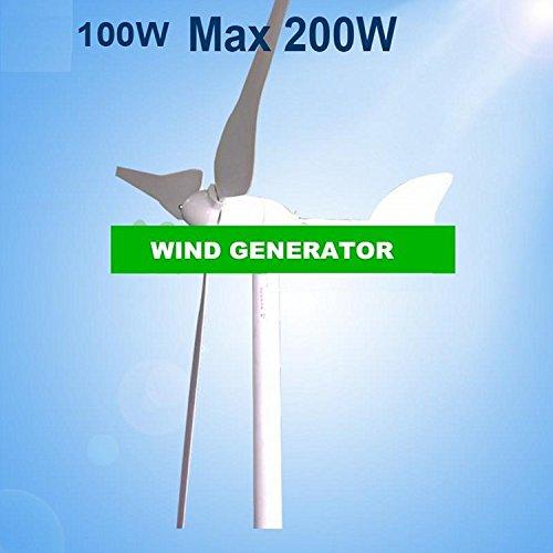 Gowe 100W Windkraftanlage Wind Energie Maschine Verwendung für trinkbar Wind Solar System