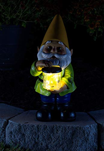 Buy garden gnomes