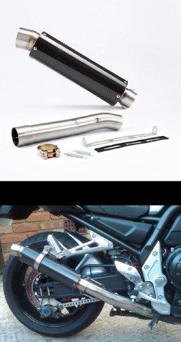 2001-2005 Yamaha FZS 1000 Fazer Carbon GP Exhaust