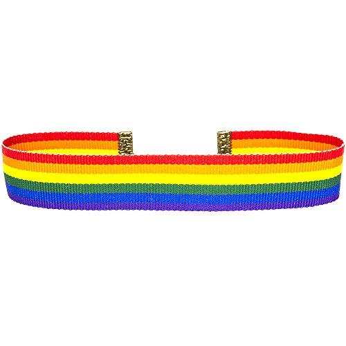 (Twilight's Fancy 22mm Rainbow Grosgrain Ribbon Choker Necklace (Small))