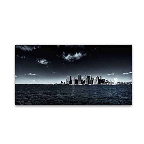 Trademark Fine Art Nyc Financial District And Downtown By David Ayash Wall Decor Wall Decor  24 By 47 Inch