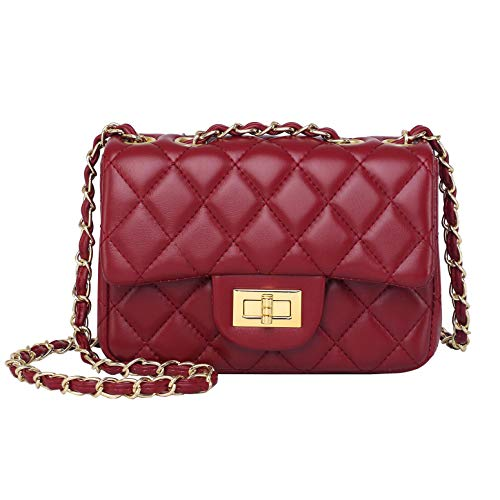 Volcanic Rock Women Quilted Crossbody Bag Girls Side Purse and Shoulder Handbags Designer Clutch with Chain (Wine Red)