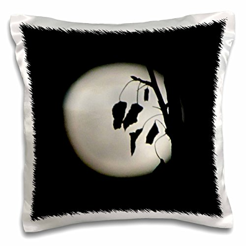 Shoot for the Moon Pillows - 3