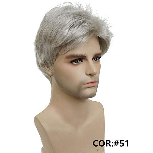 Short Silver gray Wig Mens Short Synthetic Hair Wigs COLOUR CHOICES,51,6 inches]()