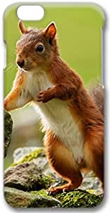 Squirrel Stones Apple iPhone 6 Case, 3D iPhone 6 Cases Hard Shell Cover Skin Casess