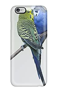 New Style New Arrival Iphone 6 Plus Case Kissing Budgies Case Cover 3329574K86791766