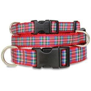 Scottish Plaid Dog Collar – Royal Stewart Tartan, My Pet Supplies