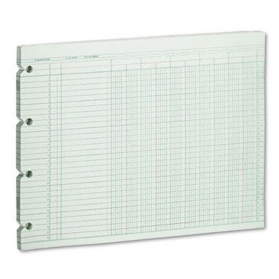 Wilson Jones G1010 Accounting Sheets, 10 Column, 9-1/4 x 11-7/8, 100 Loose Sheets/Pack, Green ()