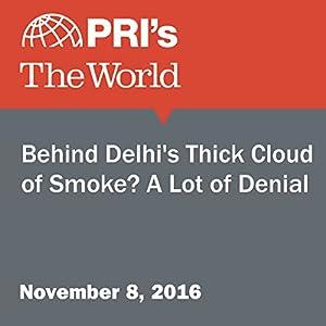 Behind Delhi's Thick Cloud of Smoke? A Lot of Denial
