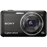Sony DSC-WX5/B WX Series, 3D Sweep Panorama, Exmor R CMOS Sensor At A Glance Review Image