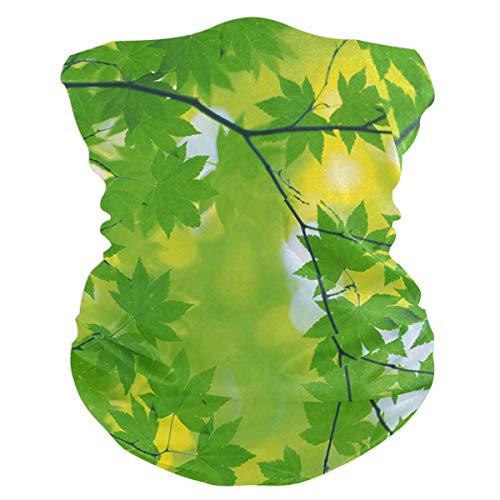 NMCEO Headband Green Leaves Sunshine Headwear Sport Turban/Headkerchief/Sweatband for Unisex Outdoor Activities