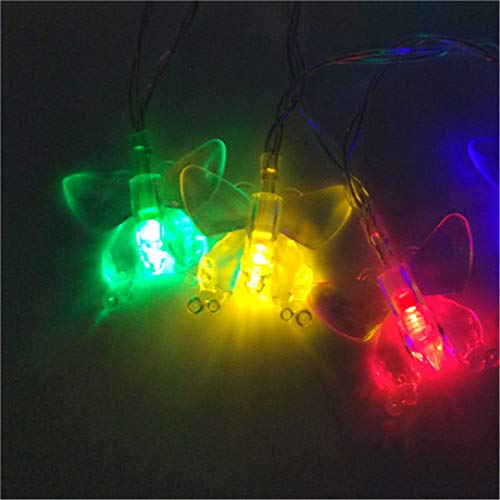 Fiber Optic Blossom Led String Lights