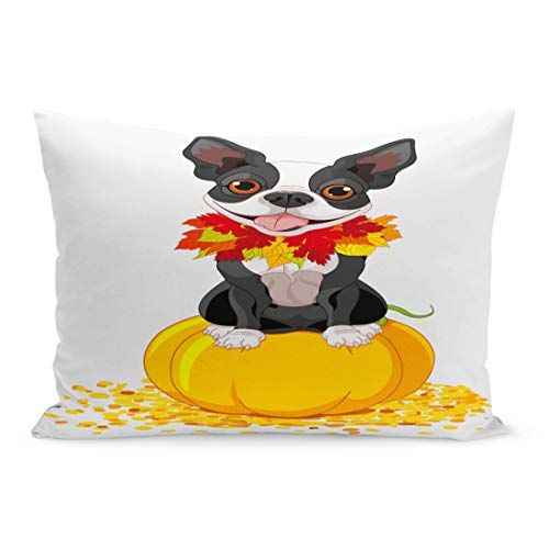 Semtomn Throw Pillow Covers Dog Boston Terrier Sits on Pumpkin Halloween Cartoon Costume Animals Pillow Case Cushion Cover Lumbar Pillowcase Decoration for Couch Sofa Bedding Car 20 x 26 inchs ()