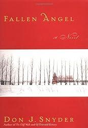 Fallen Angel : A Novel