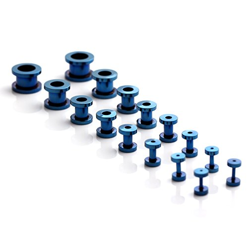 Ruifan 16pcs Surgical Steel Screw Tunnel Gauge Ear Expander Stretching Kit Plugs Piercing -8 Pairs 14g-00g (1.6mm-10mm) Blue - Size Gauges 8