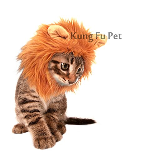Kung  (Lion Costume For Small Dogs)