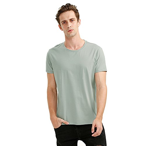 ZAN.STYLE Men's Classic Short Sleeve Crew Neck T Shirt (X-Large, Light Green)