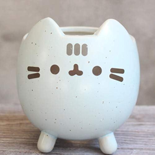 Maceta para gatos de cerámica con diseño de gato: Amazon.es: Jardín