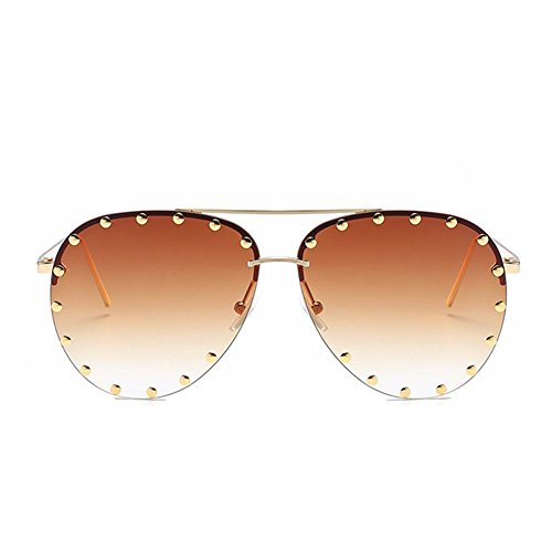 Fashion Culture Unisex Affair Studded Aviator Sunglasses Ombre Lens, ()