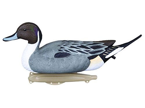 Flambeau Outdoors Storm Front 2 Pintail