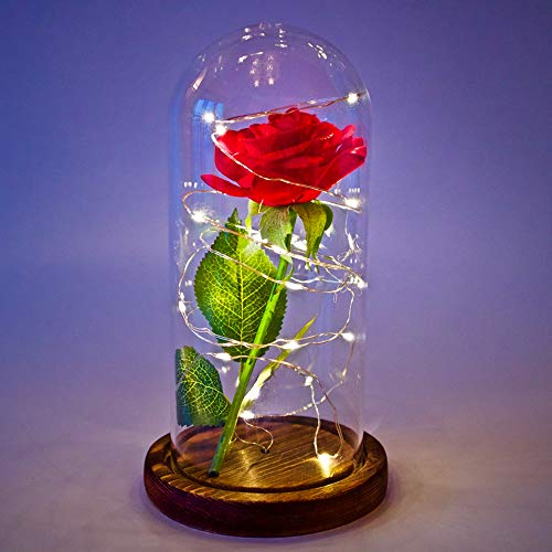 daoruike Beauty and The Beast Rose Kit Glass Cloche Bell Jar Display Case with Rustic Wood Base and LED Light String, Gift Decor for Valentine's Day Wedding Anniversary Birthday, 4.3 x 8.3 Inch