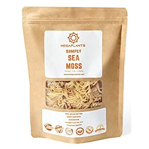MegaPlants Simply Sea Moss | 16 Oz | All Natural | Wildcrafted | Non GMO No Preservatives | Marine Protected Area…
