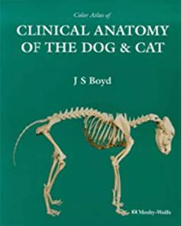 Colour Atlas of Clinical Anatomy of the Dog and Cat - Softcover ...