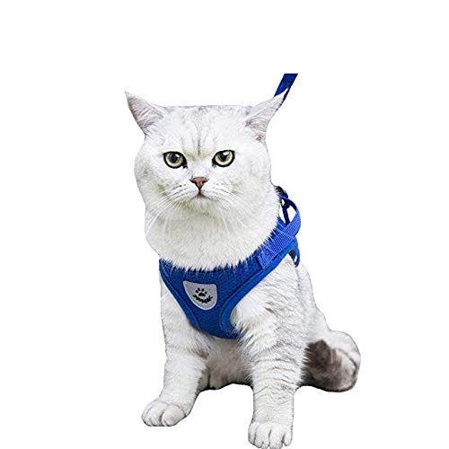 (Kamots Beauty Escape Proof Dog Cat Harness and Leash with Reflective Strap Soft Mesh Adjustable Vest with Lead for Kitten Puppy Rabbit Small Pet Walking)