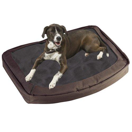 Bergan The Dog's Bed, Canteen, Large, My Pet Supplies