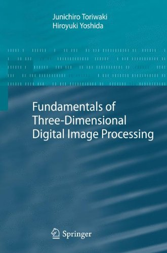Fundamentals of Three-dimensional Digital Image Processing by Springer