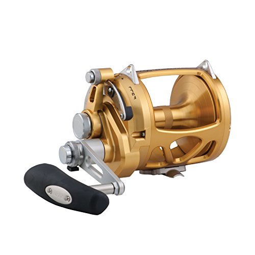 Penn INT50VISW International Visw International Vis 2 Speed Fishing Reel