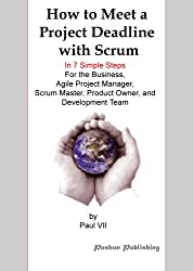 How to Meet a Project Deadline with Scrum In 7 simple steps For the Business, Agile Project Manager, Scrum Master, Product Owner, and Development Team (English Edition)