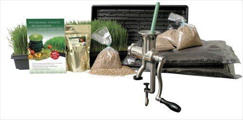 Wheatgrass Growing Kit Grow Fresh Wheatgrass With Manual Lexen Juicer