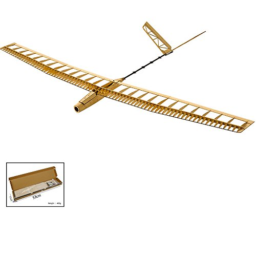 Dancing Wings Hobby Balsa Wood Radio Remote Controlled Electric Powered F14 Glider Uzi Aeroplane Laser Cut Kit Wingspan 1400mm Un-Assembled for Adults;Balsawood Hand Launch Aircraft to Build (F1401) ()