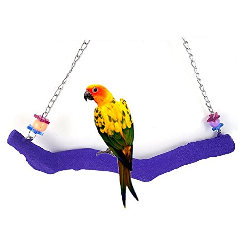 Petall Bird Parrot Swing Perch Cage Hanging Toy Scrub Wood Stand for Conures,Parakeets Cockatiels,Macaws,Finches,Love Birds (L-11.8''in) by Petall
