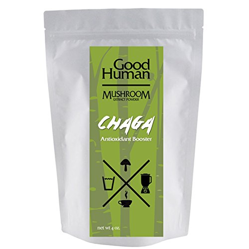 Cheap Pure Chaga Mushroom Extract Powder | Rapid Absorption | Antioxidant Supplement Tea | 4 oz Organic Wild Harvested Siberian Extract Powder