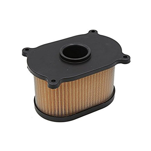 Hydrogen Monitors Sulfide (Ocamo Motorcycle Air Cleaner Filter Intake for Hyosung GT250R GT650R GV650 GT650 GT250)