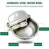 Automatic Stock Feeder Trough Bowl Dispenser