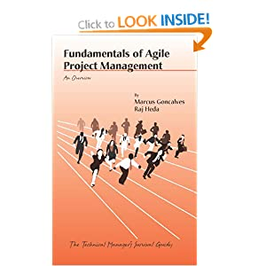 Fundamentals of Agile Project Management: An Overview (Technical Manager's Survival Guides) Raj Heda and Marcus Goncalves