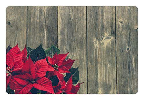 - Lunarable Poinsettia Pet Mat for Food and Water, Vintage Photo of Noel Flowers on Old Wooden Wall, Rectangle Non-Slip Rubber Mat for Dogs and Cats, Dark Pink Dusk Charcoal Grey Hunter Green