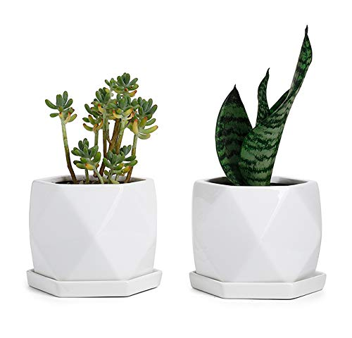 Greenaholics Plant Pots - 5 Inch Diamond Ceramic Planters for Snake Plant Seedling Small Plants, with Saucers, White, Set of 2