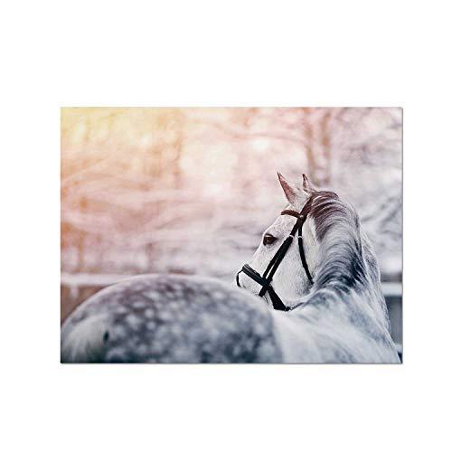 C COABALLA Horse Decor Heat Resistant Table Mat,Portrait of Gray Sports Stallion in Winter Sunset Scenery Purebred Mare Decorative for Dining,15.7